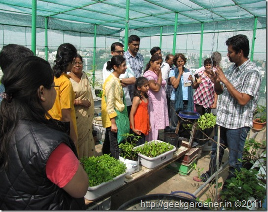 Kgi meet a success urban gardening terrace gardening for Terrace kitchen garden india