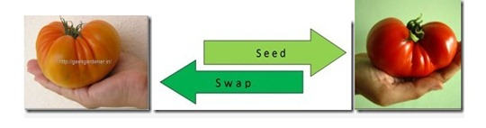 SeedSwapFull