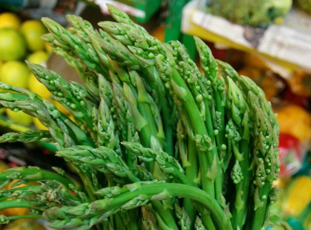 Tips on Growing Asparagus - How to grow Asparagus