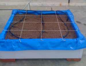 Square foot garden box